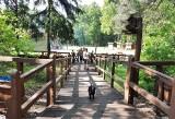 Królewskie Źródła i Staw Górny w Pionkach atrakcjami dla turystów. Zobacz zdjęcia