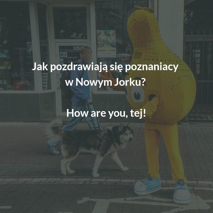 Tak z Poznania i poznaniaków śmieje się Polska. Czy my sami...