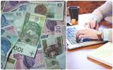 Ministerstwo rolnictwa o nagrodach wypłaconych w resorcie: wiele nieścisłości i przekłamań