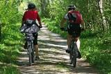 Nowa trasa rowerowa połączy Żory i Pszczynę? Urzędnicy snują plany szlaku z zielonymi miejscami odpoczynku dla rowerzystów