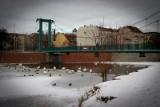 Wrocław: Ptasia grypa w fosie, Odrze i parku. Zakaz dokarmiania ptaków