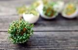 Nie wyrzucaj skorupek po jajkach! 14 sposobów na ich wykorzystanie
