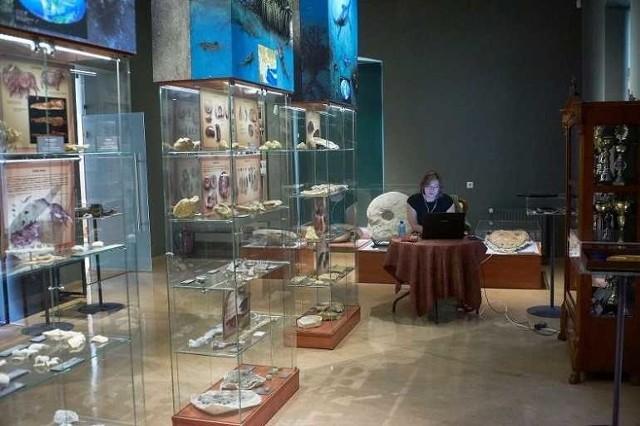 Niektóre z propozycji UO  dotyczą archeologii i paleontologii. Na zdjęciu: Paleontolog prof. Elena Yazykova w sali poświęconej wykopaliskom w Muzeum Uniwersytetu Opolskiego.
