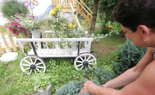 """Tak wyglądał wózek z """"Prawa i pięści"""" w 2009 roku. Jeszcze przez kilka lat stał w ogródku domu przy ul. Czarlińskiego jako kwietnik"""