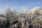 Nadciąga zima: Pierwsze przymrozki, śnieg, oblodzenie... [POGODA NA NOC 24 I 25 LISTOPADA - VIDEO]