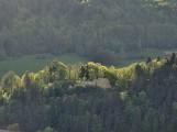Muszyna. Na górze Malnik powstanie wieża widokowa. To będzie kolejny hit turystyczny uzdrowiska? [ZDJĘCIA]