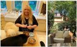 Tak mieszka Maryla Rodowicz. Kocha złote lustra, piękny ogród i koty! Co trzyma w mieszkaniu? [zdjęcia]