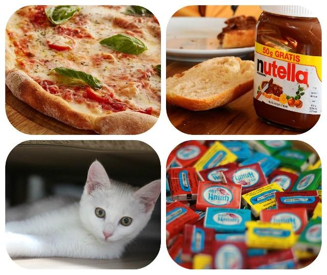 Pizza, świstaki, nutella, a nawet guma do żucia mają swoje dni. Jakie jeszcze nietypowe święta będziemy obchodzić w lutym?>> Najświeższe informacje z regionu, zdjęcia, wideo tylko na www.pomorska.pl