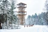 Tutaj zimą bywa naprawdę bajkowo! Podpowiadamy ciekawe miejsca wokół Zielonej Góry, które świetnie nadają się na zimowe spacery