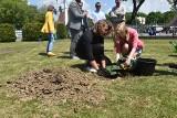 Tarnów. Na terenie kampusu tarnowskiej PWSZ zasadzono drzewo tlenowe. To inicjatywa Nieformalnej Grupy Tarnowskiej [ZDJĘCIA]