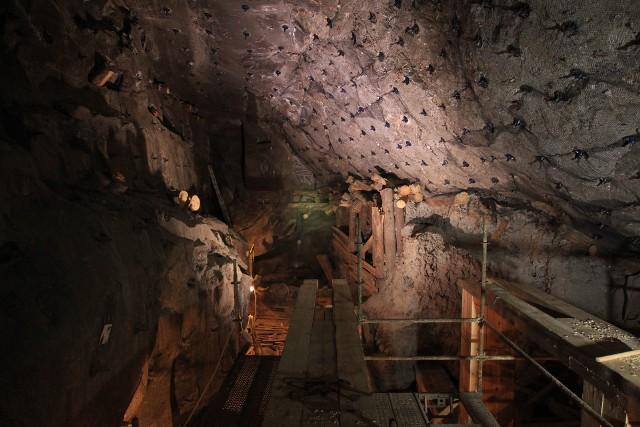 Komora Gaisruck na III poziomie wielickiej Kopalni Soli w trakcie prac górniczych