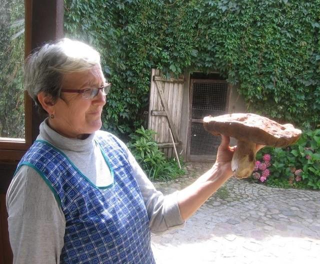 Borowika olbrzyma o średnicy kapelusza 30 cm prezentuje pani Henryka Zakrzewska
