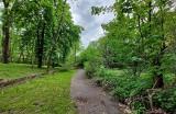Nowy Sącz. Fundacja Nowe Kierunki zamierza zrewitalizować park mieszczący się przy sądeckim szpitalu