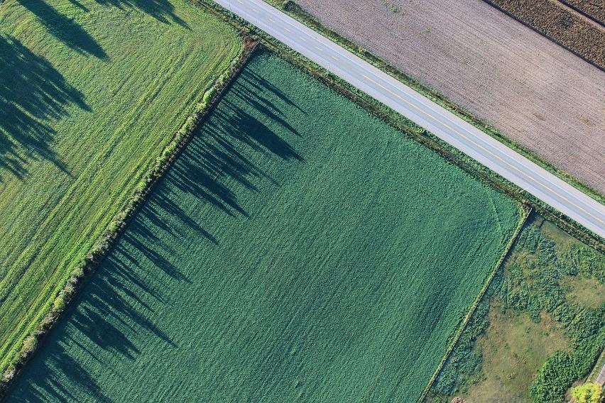 Ziemia rolna. W 2021 roku planowane są zmiany w ustawie o scalaniu i wymianie gruntów