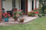 Nasz poradnik: zobacz kwiaty w doniczkach, skrzyniach i pojemnikach. Jakie kwiaty na balkon? Uprawa i pielęgnacja roślin! 7.05.2021
