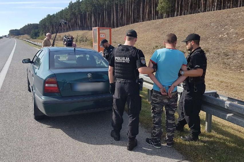 Telewizyjna ekipa Polsatu - Artur Borzęcki, Maciej Starzyński oraz Wojciech Mrozek odegrała kluczową rolę w zatrzymaniu na autostradzie A2 nietrzeźwego mężczyzny, który stwarzał ogromne zagrożenie dla innych kierujących. Stały kontakt z policją i przekazywane informacje o aktualnym położeniu, umożliwiły skoordynowane rozmieszczenie patroli. Niedaleko od policjantów nietrzeźwy, dla którego na alkomacie zabrakło skali, zajechał drogę przejeżdżającym żandarmom. Ci zatrzymali kierowcę i przekazali go w ręce policyjnego patrolu. Ta sama telewizyjna ekipa przed laty miała podobną sytuację i wtedy również dzięki ich właściwej reakcji zatrzymano nietrzeźwego kierowcę.W poniedziałek (17 września) reporter stacji Polsat- Artur Borzęcki, operator kamery Maciej Starzyński oraz operator dźwięku Wojciech Mrozek na miejscu obsługi podróżnych przy autostradzie A2 zauważyli zataczającego się mężczyznę, który wsiadł za kierownicę pojazdu, a następnie ruszył w kierunku zachodniej granicy. - Reporter wraz z kolegami ruszył za kierującym i jednocześnie o swoim podejrzeniu poinformował Policję. Dzięki utrzymywaniu stałego kontaktu z Oficerem Dyżurnym Komendy Powiatowej Policji w Świebodzinie i informowaniu o aktualnej pozycji, koordynowana była praca patroli, które przemieściły się na autostradę, aby dokonać zatrzymania nietrzeźwego - mówi sierż. sztab. Marcin Ruciński z Komendy Powiatowej Policji w Świebodzinie. Według relacji zgłaszającego, kierowca skody stwarzał zagrożenie dla innych kierujących. Miał zajeżdżać drogę innym pojazdom poruszającym się po autostradzie. Jednym z pojazdów, któremu wjechał w tor jazdy, był patrol Żandarmerii Wojskowej. Było to niedaleko od miejsca, w którym znajdowali się policjanci.Funkcjonariusze żandarmerii uniemożliwili dalszą jazdę 31-letniemu mężczyźnie oraz obezwładnili go. Chwilę później na miejscu byli policjanci. Podczas badania stanu trzeźwości przez policjantów ze Świebodzina na urządzeniu skończyła się skala, wskazując ponad 4 promile alkoholu.