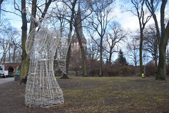 Świąteczny anioł stanął niedaleko wieży ciśnień w parku Chrobrego.