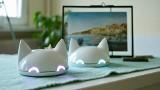 Anima – elektroniczny lisek przypominajka – zadebiutuje na Kickstarterze. Podlaski projekt idzie po szansę na masową produkcję