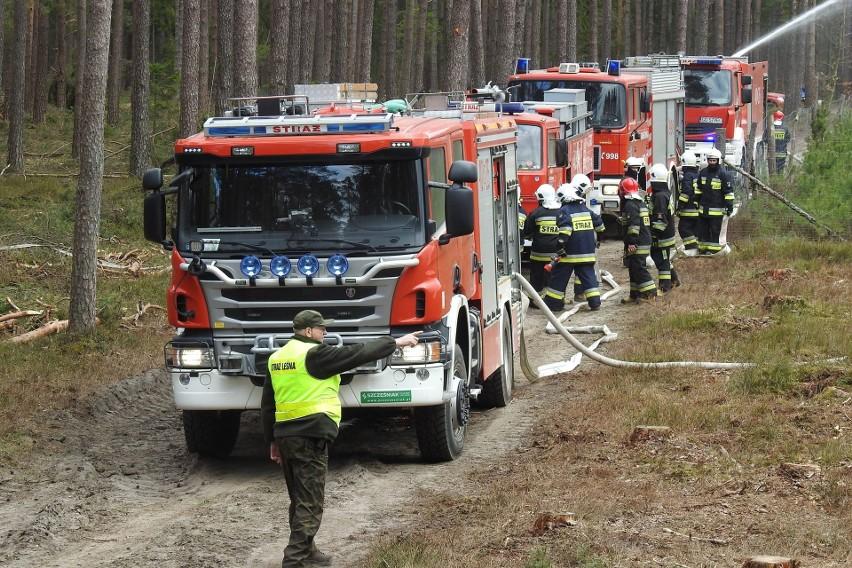 Ćwiczenia pożarnicze.