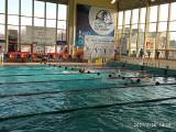Młodzi pływacy Juvenii Białystok  zdobyli sześć medali w Ciechanowie