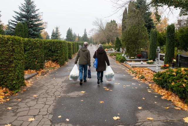 Tak w sobotę, 7 listopada, wygląda sytuacja na cmentarzu Junikowo w Poznaniu.