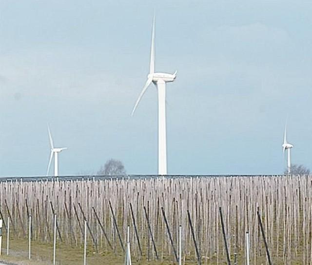 Podobne elektrownie wiatrowe staną w gminie za kilka lat (fot. Mariusz Kapała)