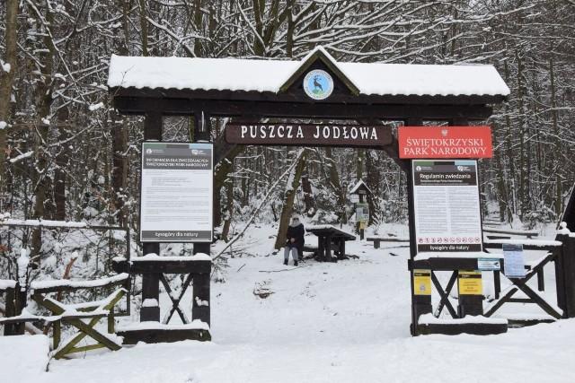 We wtorek, 26 stycznia odwiedziliśmy Puszczę Jodłową. Przykryta białym pucham prezentuje się niesamowicie. Krajobrazy wyglądają jak z bajki. Zobaczcie na kolejnych slajdach >>>