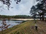 Starganiec na granicy Katowic i Mikołowa wypięknieje. Rewitalizacja terenów wokół stawu ma kosztować około 4 mln zł