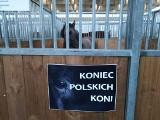 """Gorąco na wystawie zwierząt w Poznaniu. """"Rząd dobija polską hodowlę"""""""