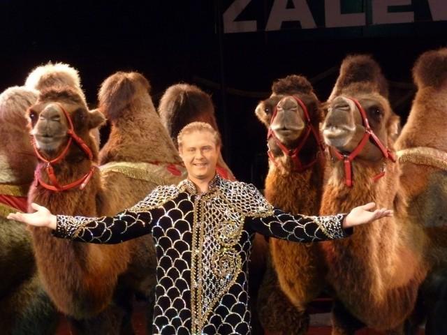 Wielbłądy, lwy, kozy i... jeżozwierze.