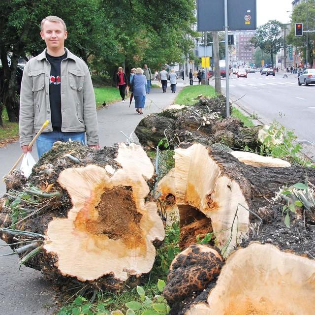 - Szkoda tych drzew - twierdzi Seweryn Prokopiuk, mieszkający niedaleko ul. Sienkiewicza. - I tak już sporo wycięto podczas remontów w centrum.