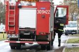 Groźny pożar na wrocławskim Muchoborze. Jedna osoba w szpitalu