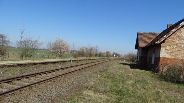 Tak wygląda dziś dawna stacja w Warzymicach. Rząd zapowiada powstanie nowego przystanku