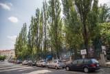 Kraków. Zamiast drzew, będzie zabudowa przy Dolnych Młynów. Konserwator chce odbudowy budynku