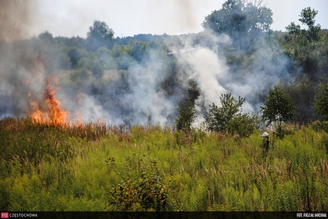 W czwartek we Florkowie pod Częstochową paliło się ściernisko