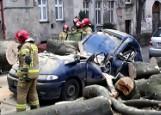 Ogromne drzewo zmiażdżyło samochód przy ul. Grunwaldzkiej we Wrocławiu [ZDJĘCIA]