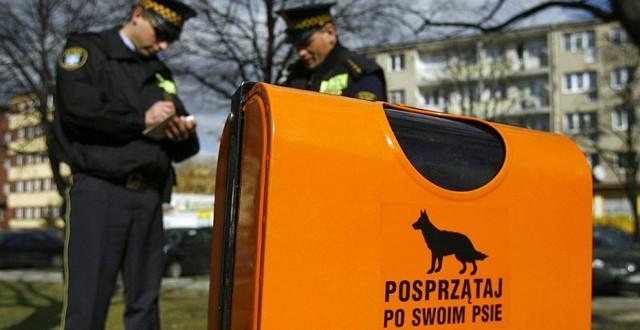 Straż Miejska zapowiada, że nie popuści właścicielom psów, których przyłapie na tym, że nie posprzątali po swoim pupilu. W końcu po to ustawiono w mieście specjalne pojemniki na psie kupki.