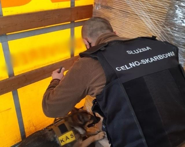 Dolnośląscy celnicy przechwycili transport papierosów bez akcyzy, ukrytych w meblach.