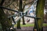 W parku Kazimierza Wielkiego w Bydgoszczy znajdziesz półkę z książkami [zdjęcia]