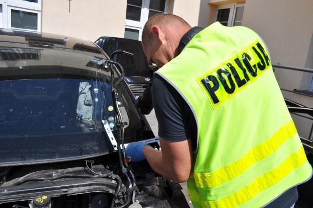 Policjanci ujawnili dziuplę z kradzionymi autami.