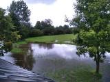 Stany ostrzegawcze na rzekach w powiecie buskim. Ogromny przyrost na Wiśle, Nida i jej dopływy zalewają pola i piwnice [RAPORT 31 sierpnia]