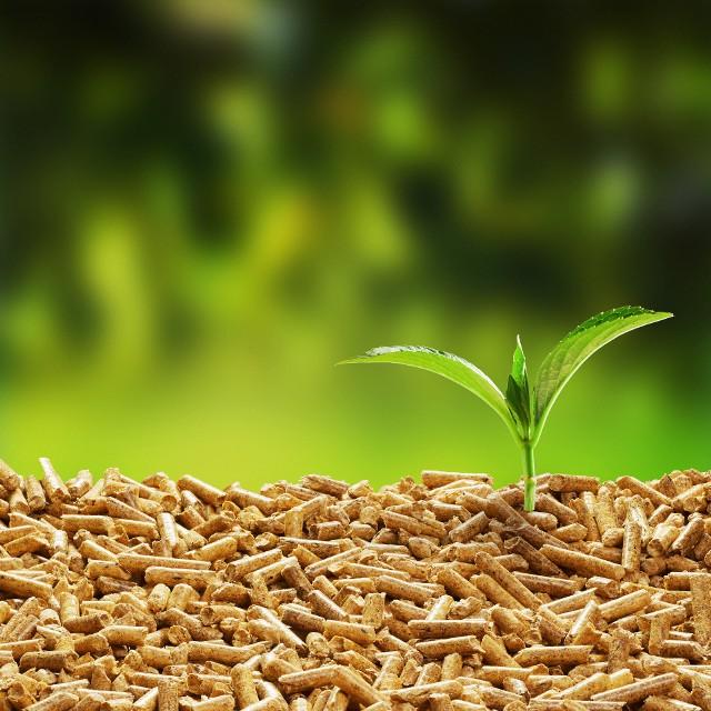 Ogrzewanie domu a ekologiaEkologiczne systemy ogrzewania to nie tylko dbałość o środowisko, w wielu przypadkach można dzięki nim zaoszczędzić także na rachunkach.