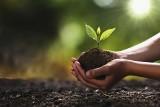 Polacy oczekują od firm zaangażowania w kwestie środowiskowe