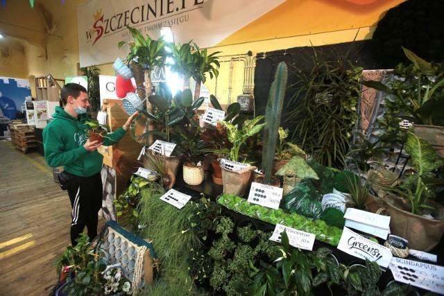 I edycja Greensy - Szczecińskiego Bazaru Roślin w ramach Szczecińskiego Bazaru Smakoszy