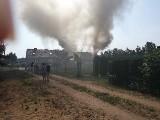 Pożar domu w Tuszynach. Osiem zastępów strażackich walczyło z żywiołem