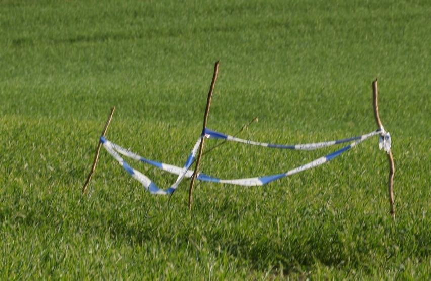 Saperzy zabrali niewybuch z pola w podmiasteckiej Pasiece....