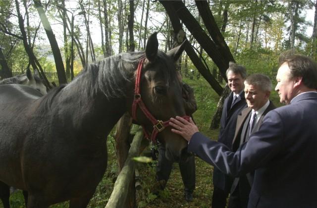 Premier Marek Belka podczas wizyty w Mikołowie.