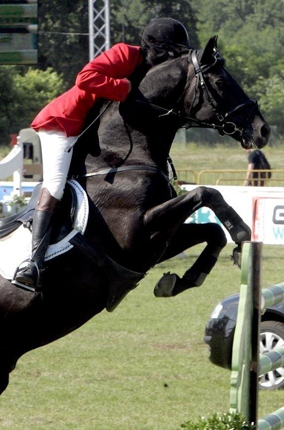Majówka z koniem już w najbliższy weekend na parkurze w Szczepankowie