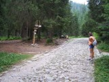Tatrzański Park Narodowy zamyka kolejny szlak. Będzie prowadzony remont