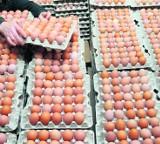 Lubelskie: Podrobionego suszu jajecznego jest u nas niewiele